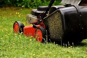 home and garden maintenance